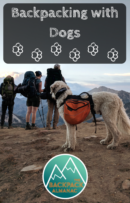 Backpacking with Dogs | The Backpack Almanac