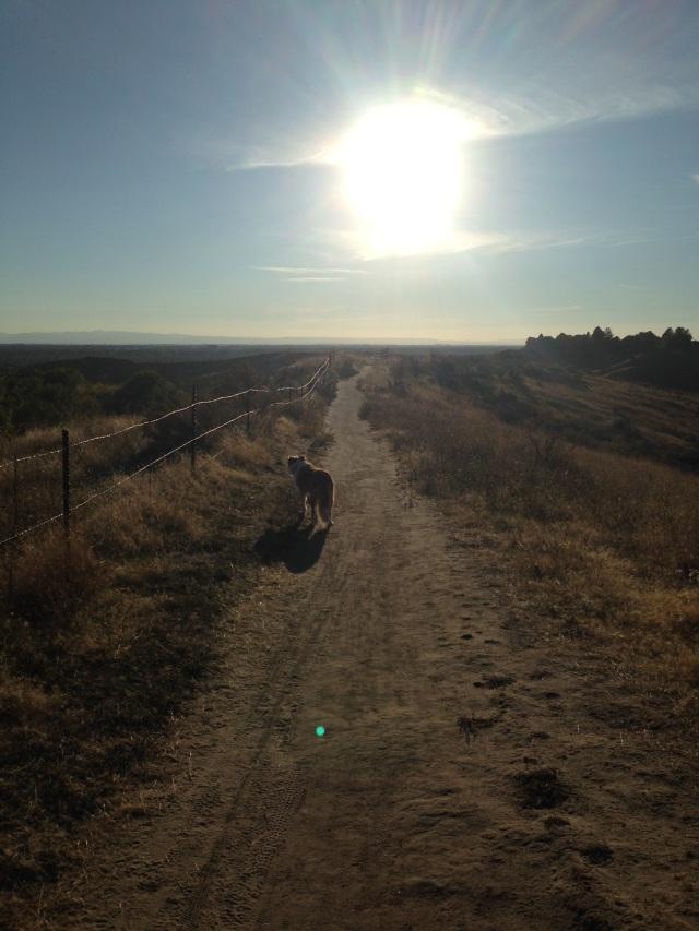 #36A Chickadee Ridge Hull's Gulch Reserve Boise Idaho