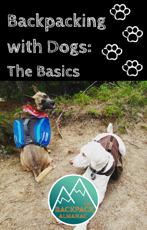 Backpacking with Dogs: The Basics | The Backpack Almanac