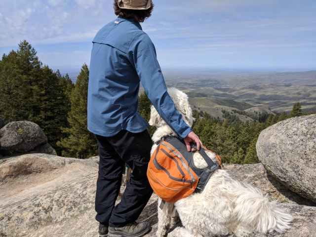 Stack Rock, Charlie the Labradoodle, Boise, Boise National Forest